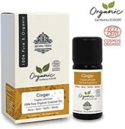 Organic Ginger Essential Oil, Aroma Tierra
