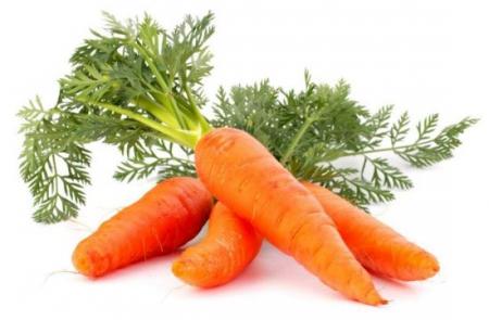 Ripe Organic Carrot