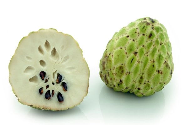 Custard-Apple (Annona Squamosa) . Whole fruit and cross-section, showing creamy white flesh and dark seeds. Shot on white