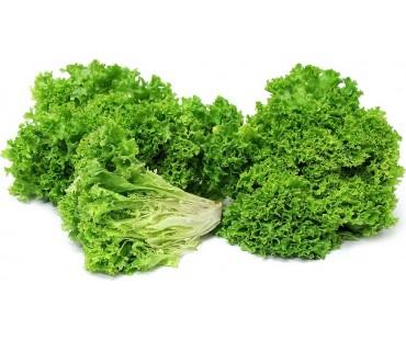 Ripe Organic Lettuce, Lolo Green