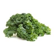 Baby Kale Green