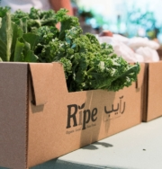 Ripe Eco Box Small