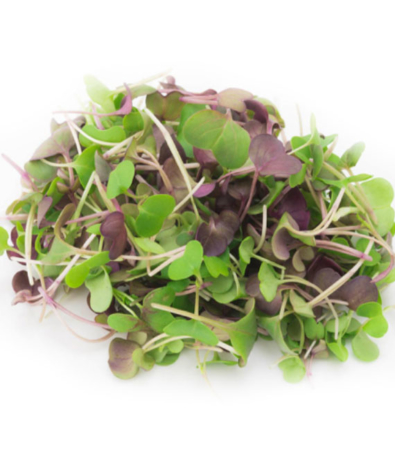 Ripe Organic Microgreens - Mix Spicy