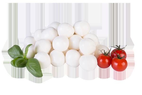 Ripe Organic Mozzarella Cheese