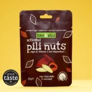 Raw Chocolate & Coconut Pili Nuts, Raw & Wild, 22g