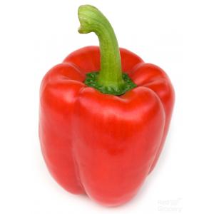 Ripe Organic Capsicum Red