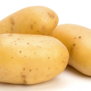 Ripe Organic Potatoes