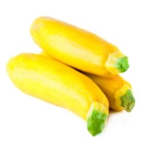 Ripe Organic Yellow Zucchini