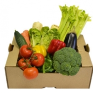 Organic Vegetable Box, Large