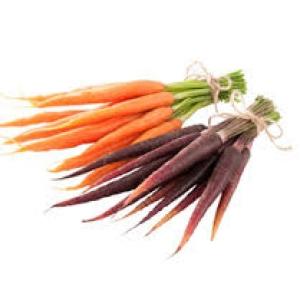 Ripe Organic Coloured carrots mixed