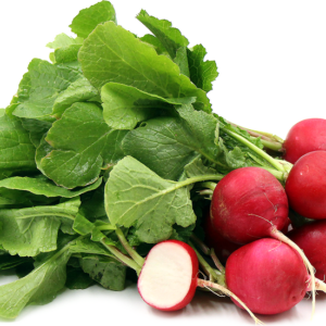 Ripe Organic Red Radish with Leaves