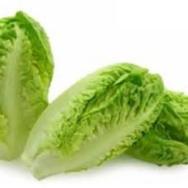 Lettuce, Baby Romaine (Gem)