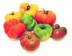 Tomato, Heirloom Mixed