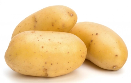 Ripe Organic Potato