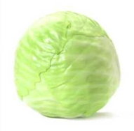 Organic Cabbage, White