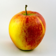 ORGANIC APPLE RED EVELINA
